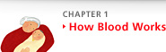 Chapter 1 How Blood Works